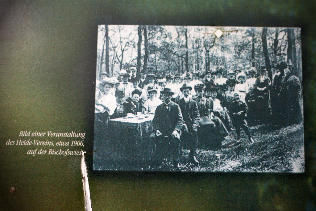 Vor mehr als hundert Jahren war die Bischofswiese nocht nicht so stark bewaldet.