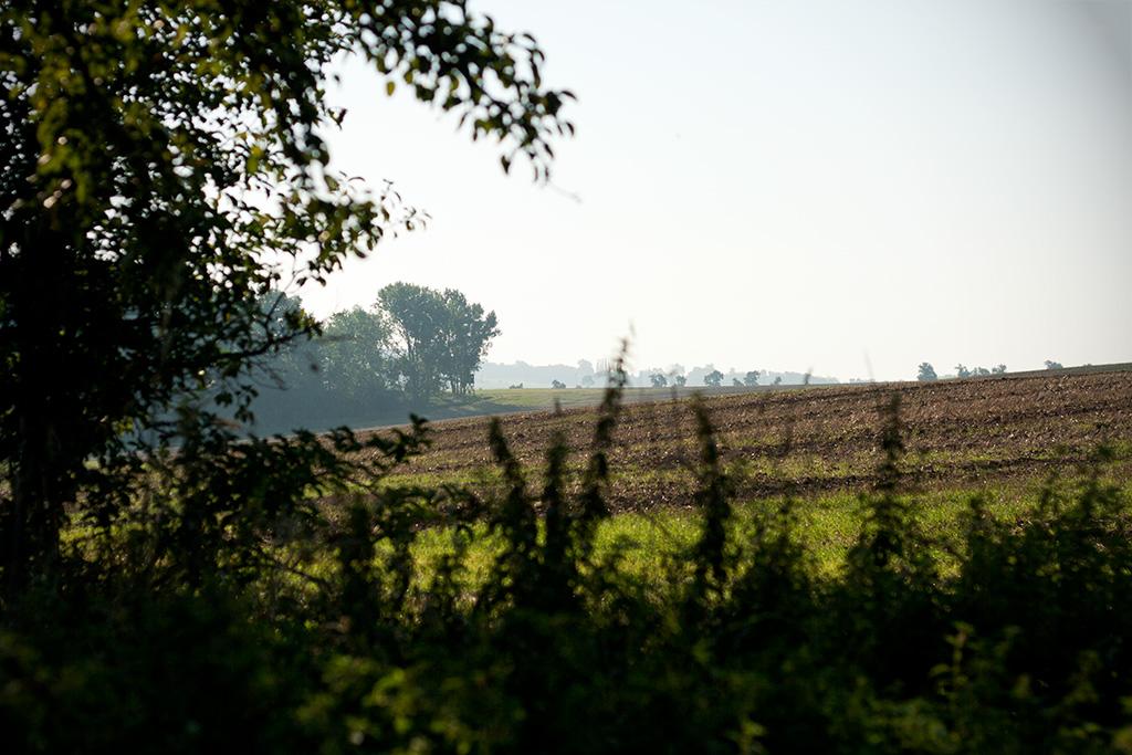 Hinter dem Stein beginnen die Landwirtschaftflächen.