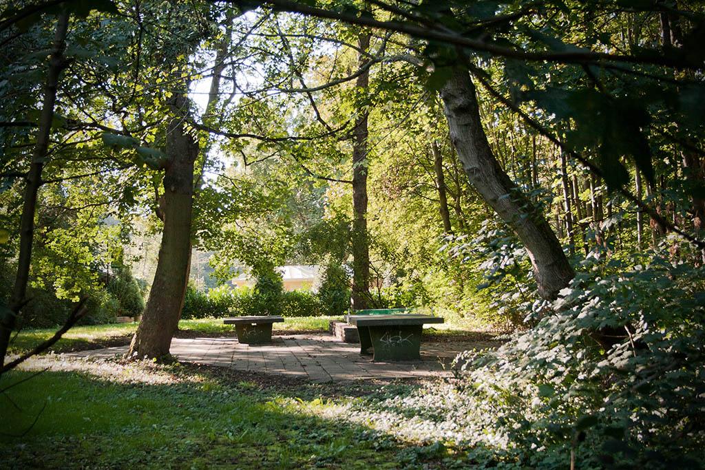 Im Südpark gibt es in der Nähe der Parkschenke Tischtennisplatten.