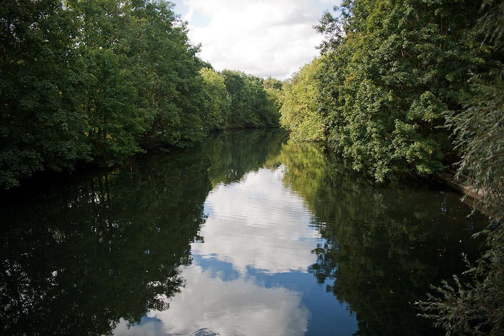 Der Teich ist sehr langezogen und windet sich um den Südpark.