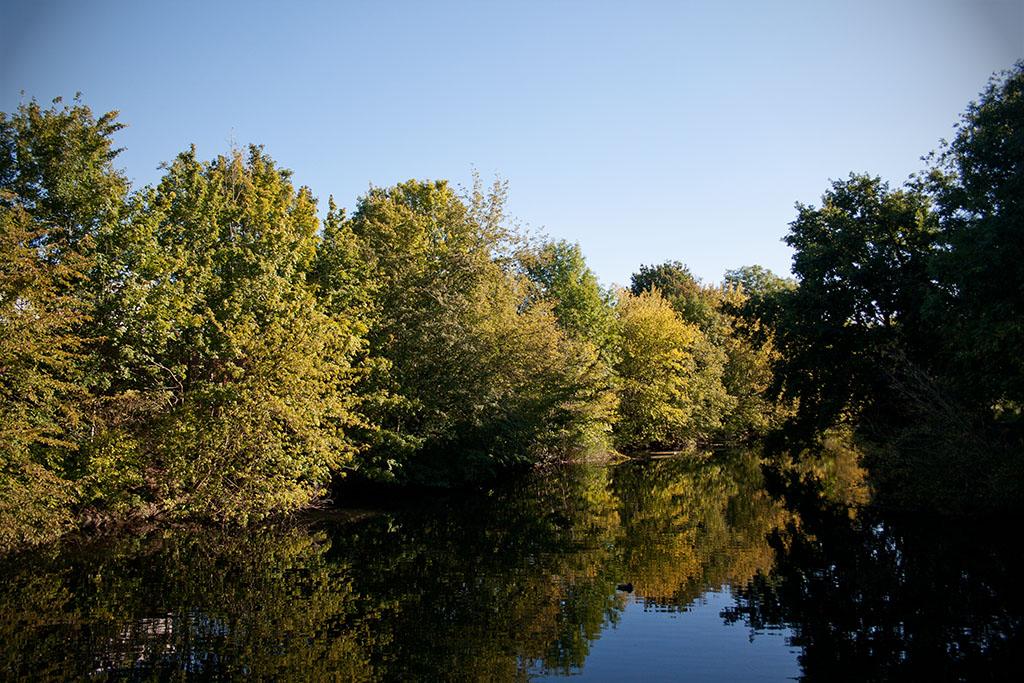 An dem Morgen ist das Wasser ruhig und klar.