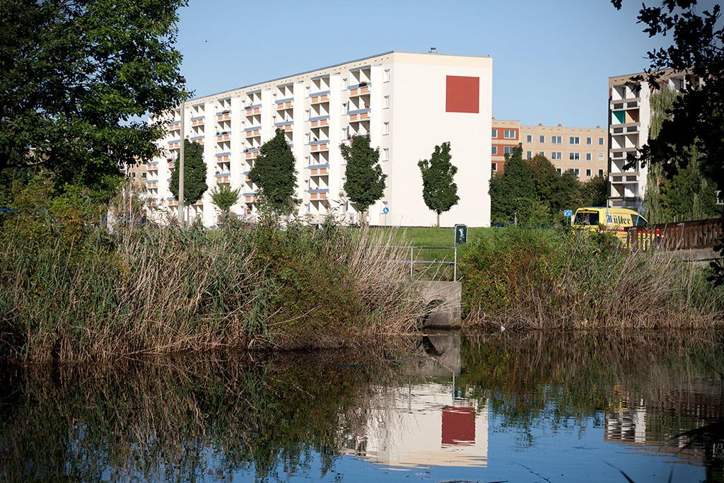 Gleich neben dem Teich erheben sich die Plattenhäuser der Neustadt.
