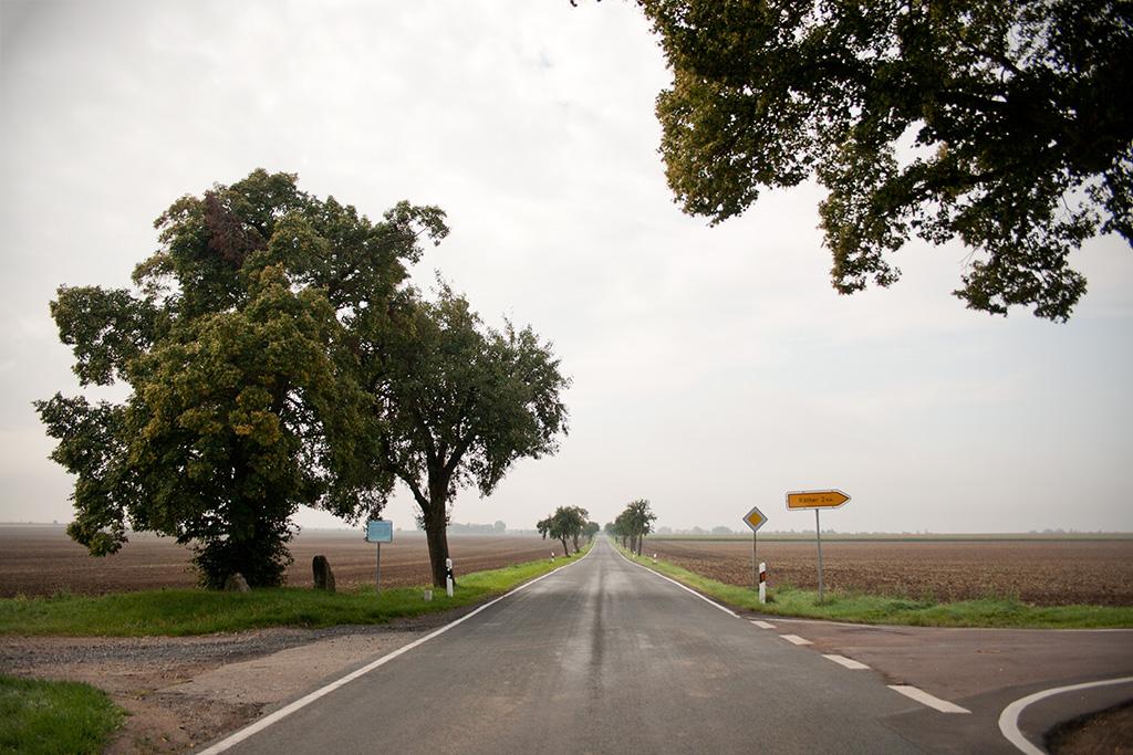 Mit dem Ortseingangsschild von Krimpe im Rücke liegen die Vierersteine links der Straße.