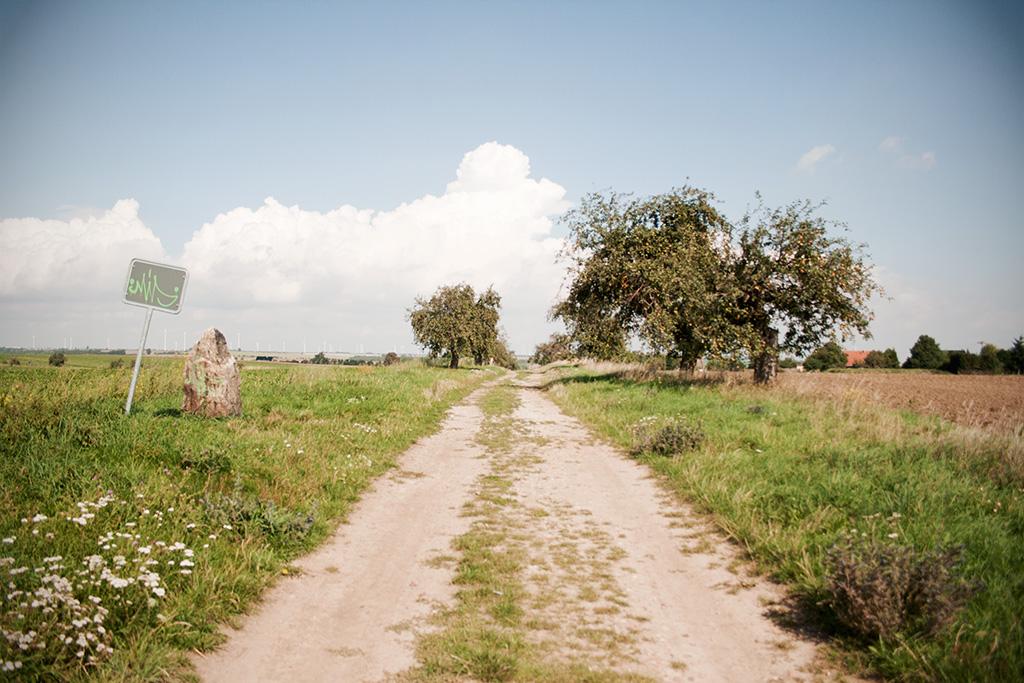 Folgt man dem Weg weiter so gelangt man zurück nach Höhnstedt.