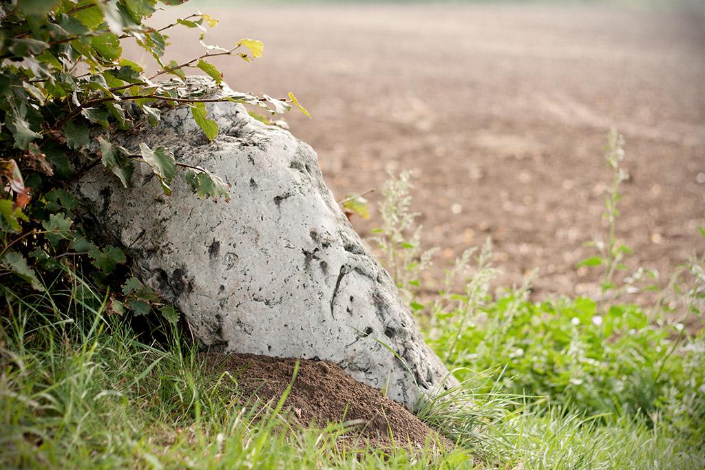 Der vierte Stein ist hell und besteht wie die anderen aus Quarzit.