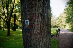 Mit dem Fahrrad durch den Südpark bei Passendorf.